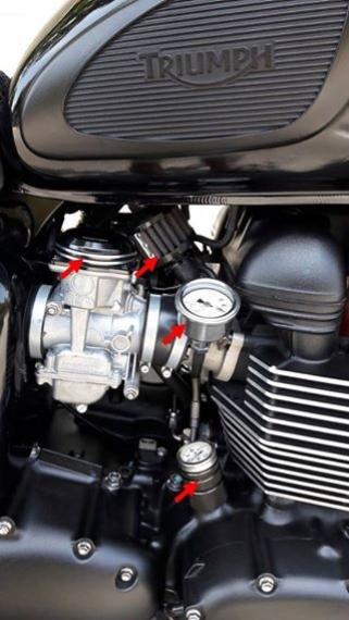 Triumph T100