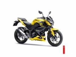 Kawasaki Z300 (ABS)