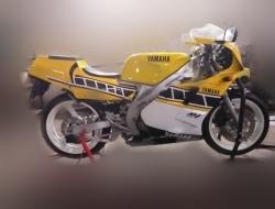 Yamaha Tzr 250 3ma