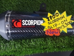 Scorpion Slip-on Z800
