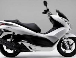 Honda PCX (White)