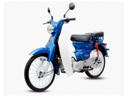 Demak Eco 110 (Whatapps- Free Apply) (Blue)