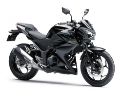 Kawasaki new z250 with side box (Black)