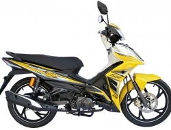 SYM bonus sr110 New (Yellow)