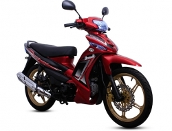 DEMAK EVO Z110 used