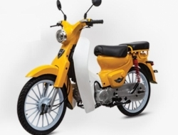Eco 110 demak  new stock (Yellow)