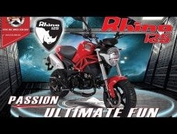 Ktns rhino 125 (mini ducati monster)