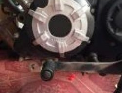RS150R Crankcase Cover (guard)