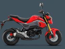 2017 Honda MSX125 DP0 (Promotion Apply Online)
