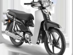 2017 Honda ex5 fuel injection - whatapps apply