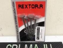 Rextor.R racing valve 19mm/21.5mm y15zr Fz lc135