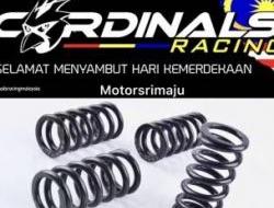 CarDinals racing Valve spring 6.3 lc y15zr fz150