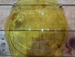 Bubble Visor With 3 Front Buttons Yellow Noisy N