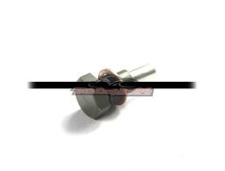 BENELLI TNT600 OIL SUMP MAGNET NUT (Pre-order 10days+-)