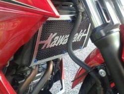 NINJA 250 Z250 SL Radiator Cover Net (NINJA250)