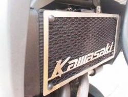 Versys 650 ER6N ER6F Kawasaki Radiator Cover (ER6)