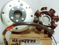 Karisma Fuel Coil Magnet Assy ( original ) myg