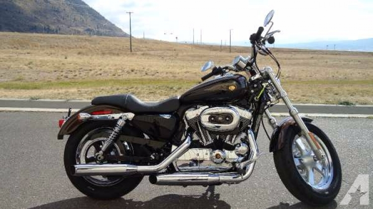 Limited Edition Harley Sportster For Sale