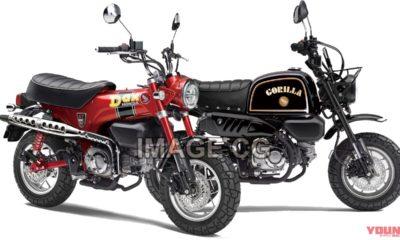 Honda Gorilla 125 & Dax 125